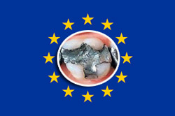 Further new consultation on amalgam launched in Europe