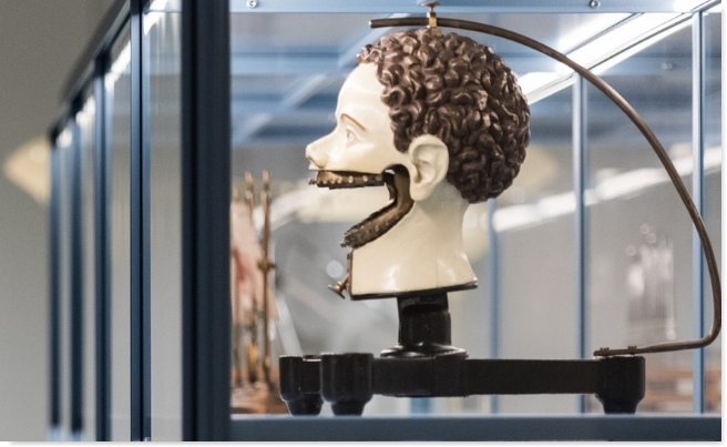 -Teeth- exhibition opens at Wellcome Collection