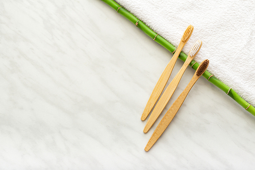 Bamboo brush awarded Oral Health Foundation's seal of approval