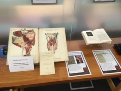 BDA celebrates 100 years of its library