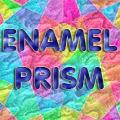 Enamel Prism