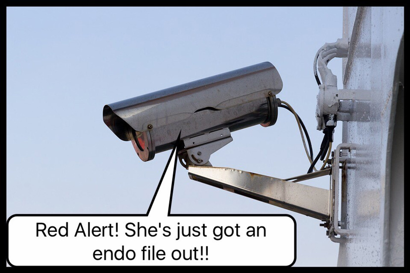 Red Alert! She's just got an endo file out!!