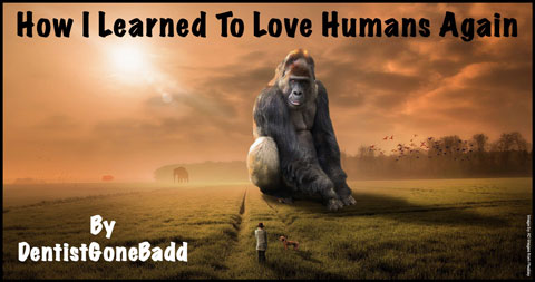 How I Started To Learn To Love Humans Again