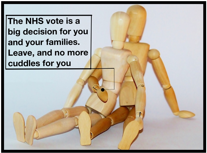 The NHS vote is a big decision for you and your families. Leave, and no more cuddles for you